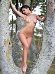 Joelina Sensual Grove Playboy Plus Photo Gallery Morazziacom